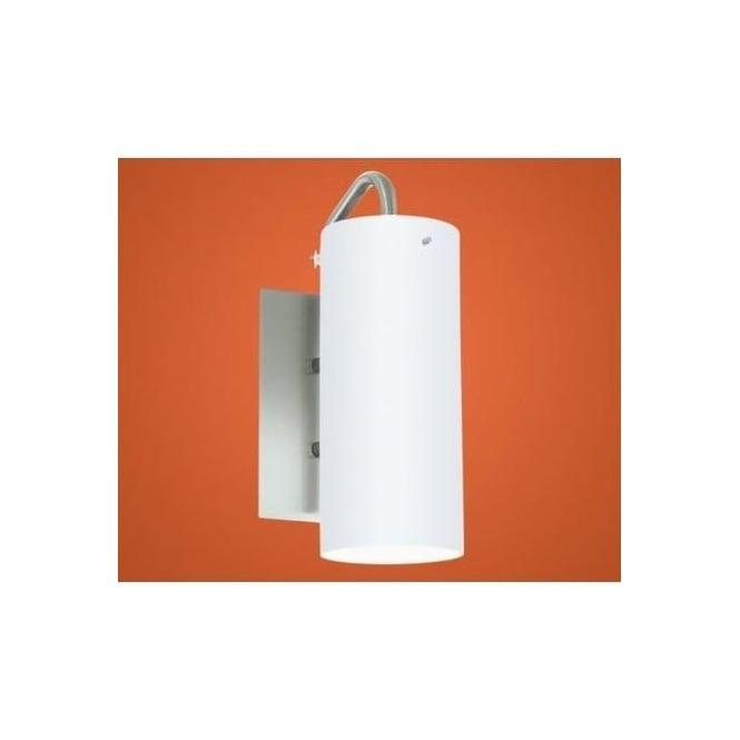 Eglo 91081 Palmoli 1 light modern outdoor wall light stainless steel finish IP44 rated